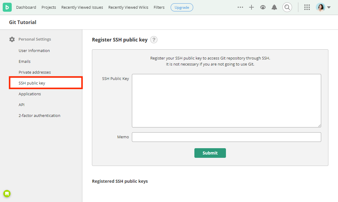 "Click ""Register SSH public key"""